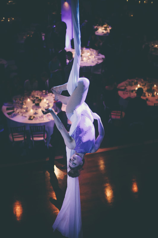 me performing on the silks at an elegant party